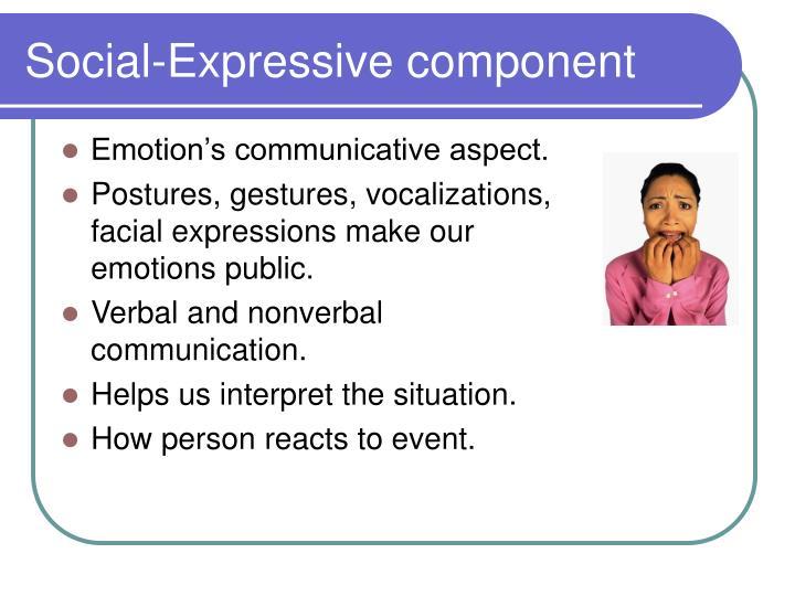 Social-Expressive component