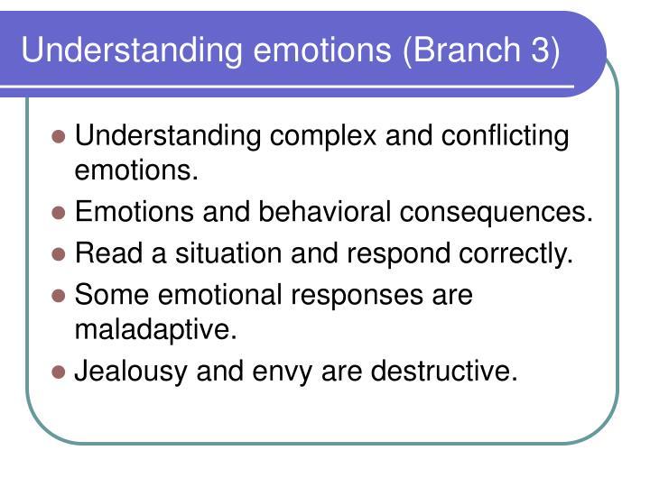 Understanding emotions (Branch 3)
