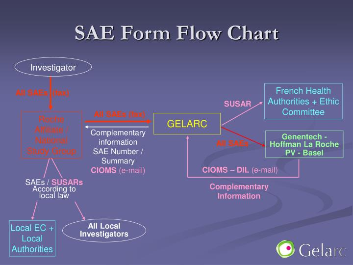 SAE Form Flow Chart