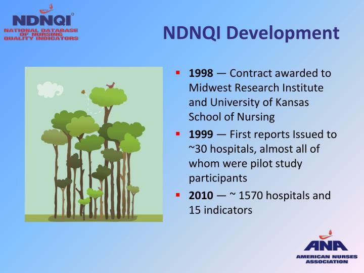 NDNQI Development