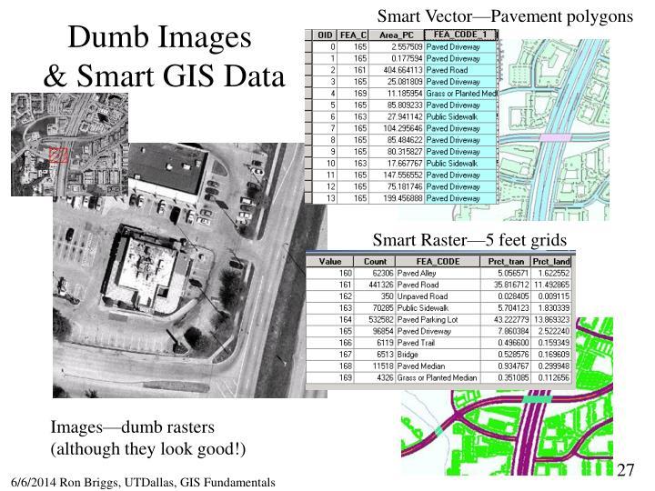 Smart Vector—Pavement polygons