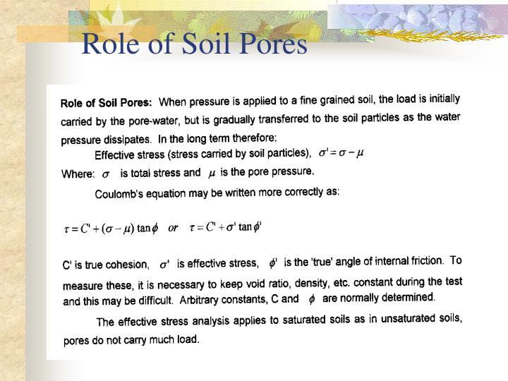 Role of Soil Pores