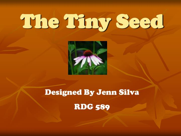 the tiny seed n.