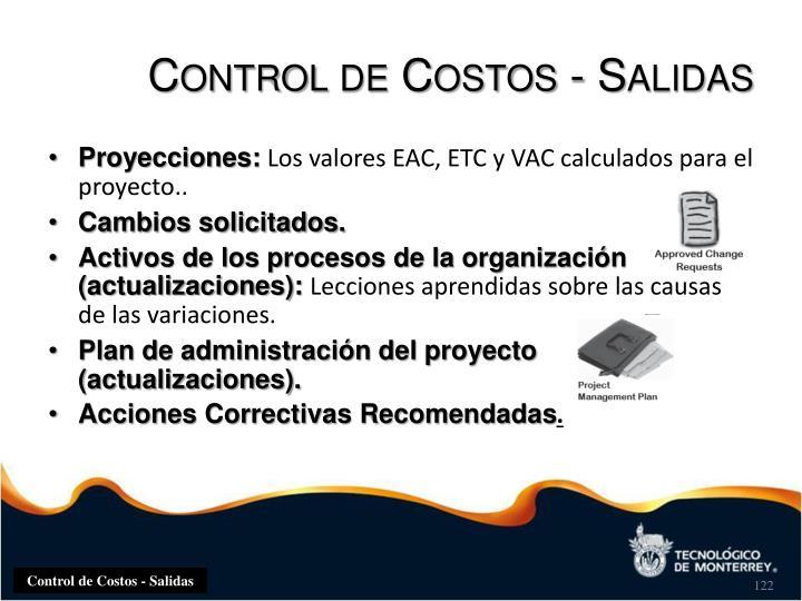 Control de Costos - Salidas