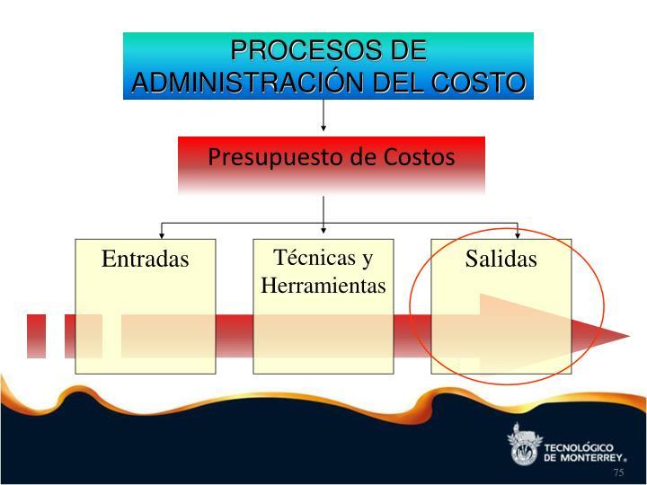 PROCESOS DE ADMINISTRACIÓN DEL COSTO