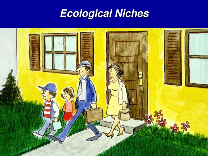 Ecological Niches