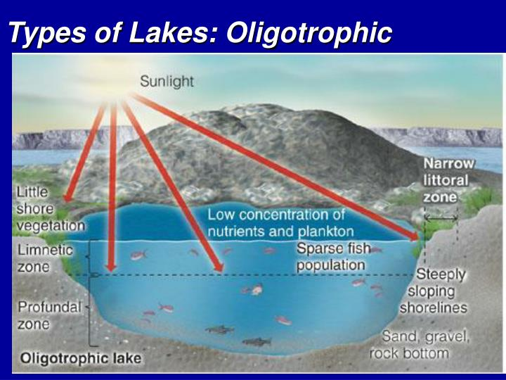 Types of Lakes: Oligotrophic