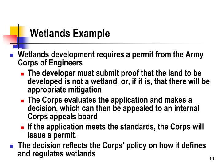 Wetlands Example