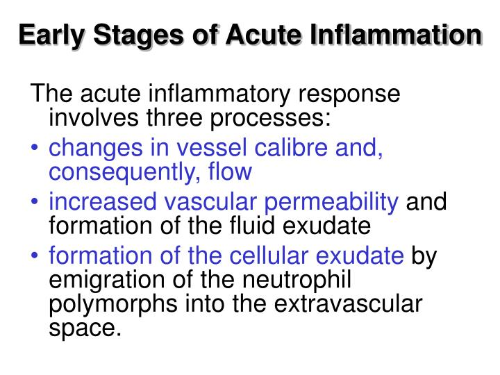 Early Stages of Acute Inflammation