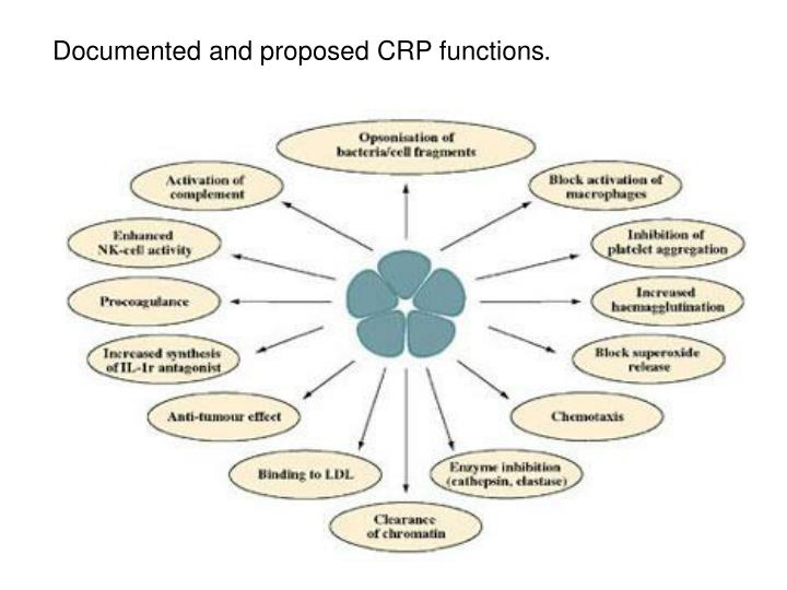 Documented and proposed CRP functions