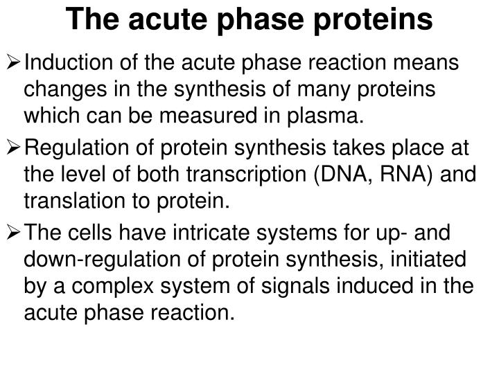 The acute phase proteins