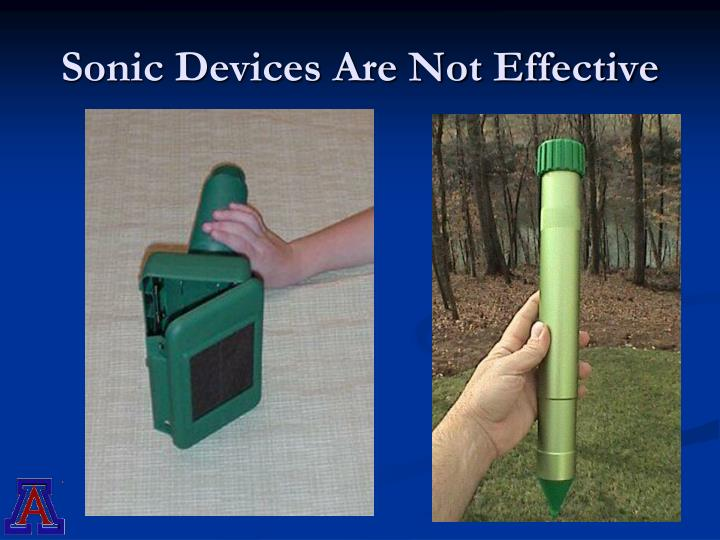 Sonic Devices Are Not Effective