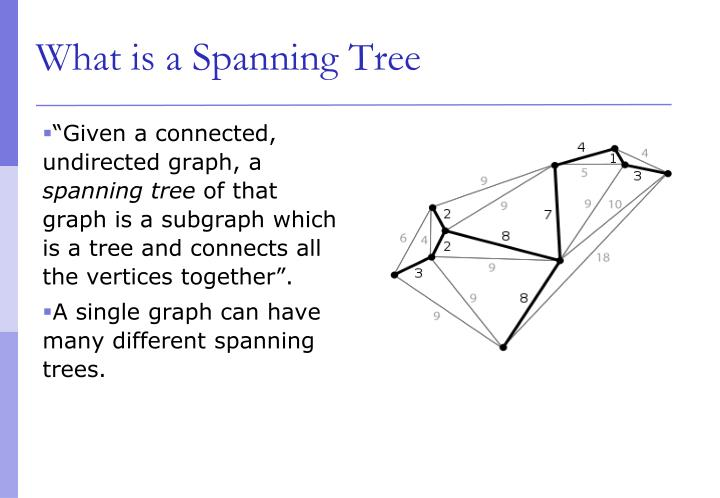 What is a Spanning Tree