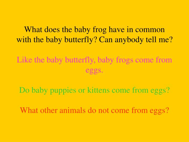 What does the baby frog have in common with the baby butterfly? Can anybody tell me?