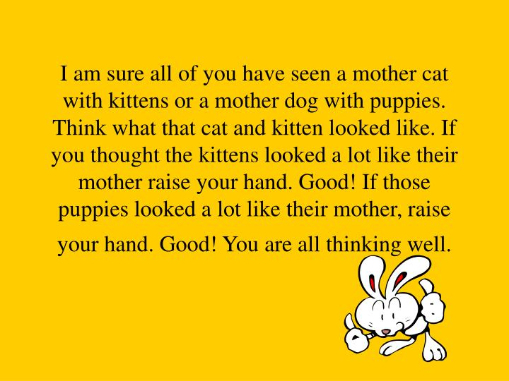 I am sure all of you have seen a mother cat with kittens or a mother dog with puppies. Think what that cat and kitten looked like. If you thought the kittens looked a lot like their mother raise your hand. Good! If those puppies looked a lot like their mother, raise your hand. Good! You are all thinking well.