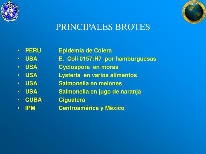 PRINCIPALES BROTES