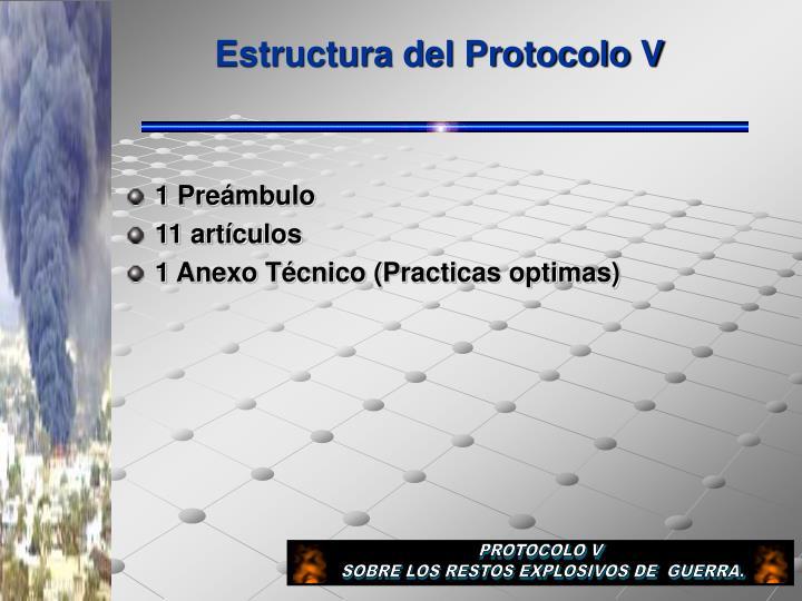 Estructura del Protocolo V