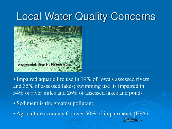 Local Water Quality Concerns