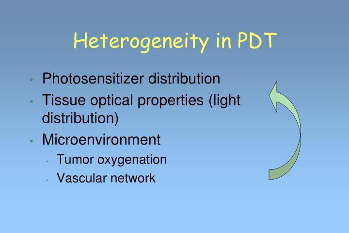 Heterogeneity in PDT