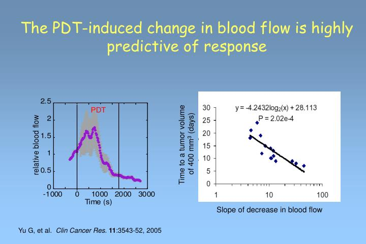 The PDT-induced change in blood flow is highly predictive of response