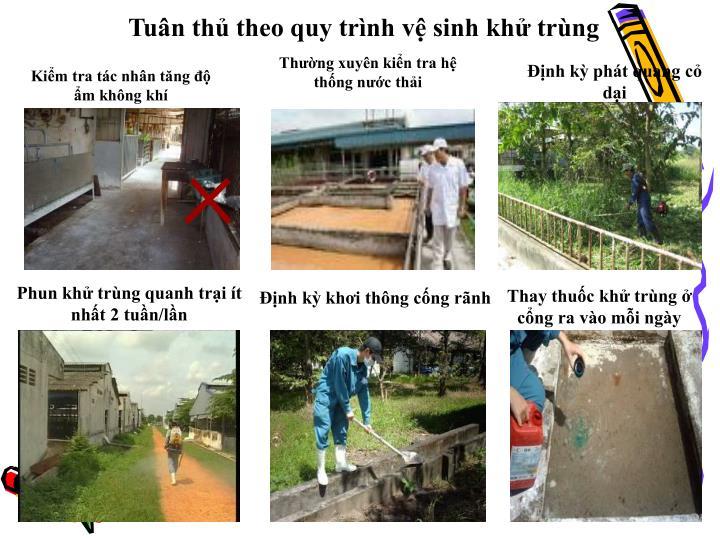 Tuân thủ theo quy trình vệ sinh khử trùng