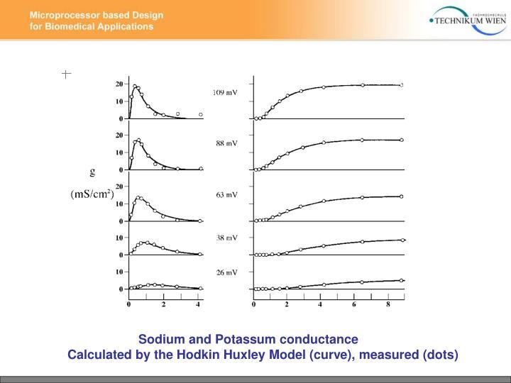 Sodium and Potassum conductance
