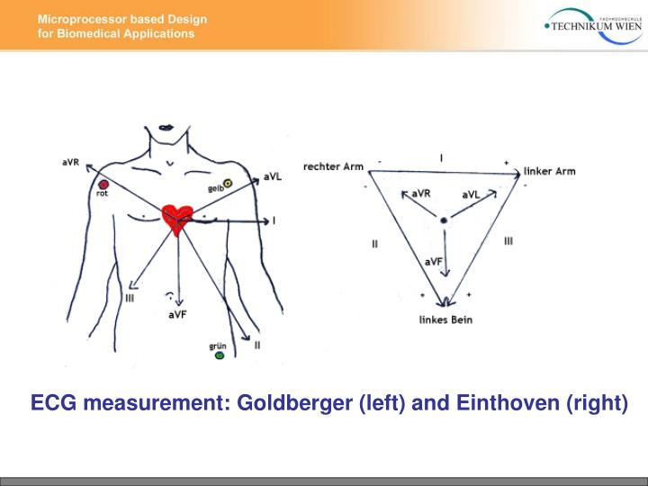 ECG measurement: Goldberger (left) and Einthoven (right)