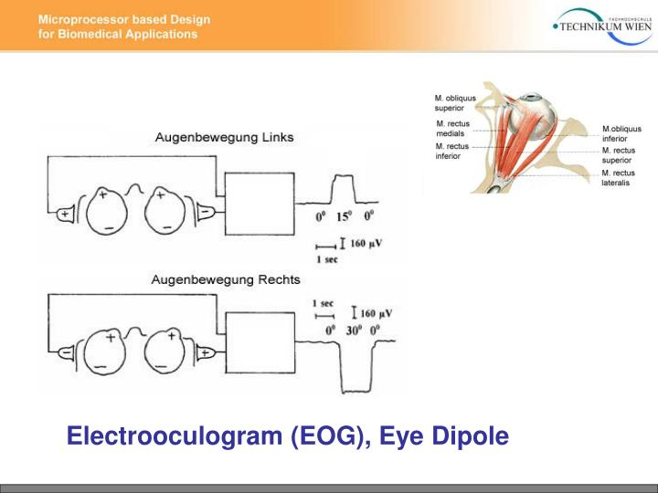 Electrooculogram (EOG), Eye Dipole