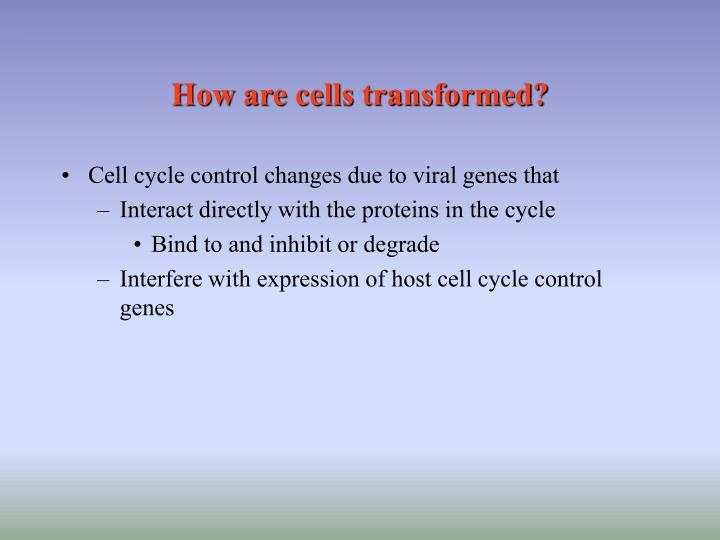 How are cells transformed?