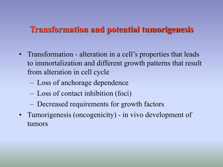 Transformation and potential tumorigenesis