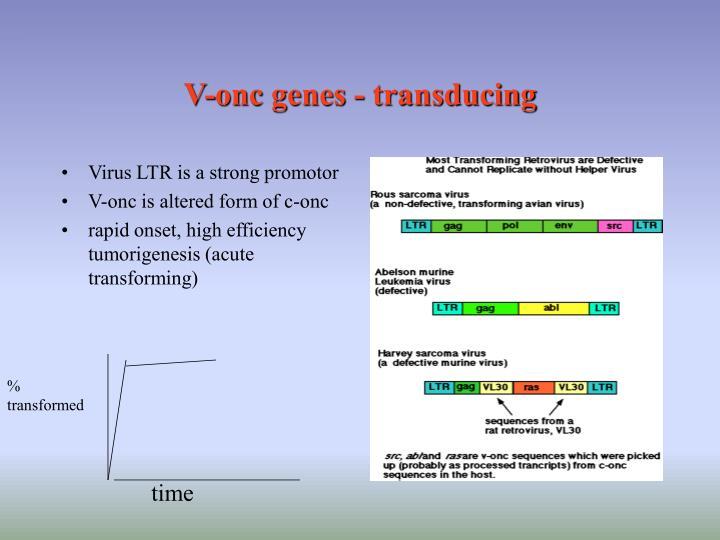 V-onc genes - transducing