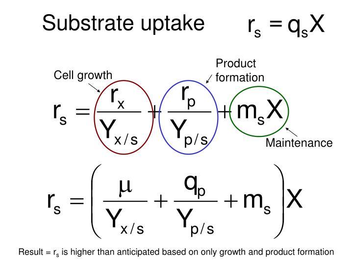 Substrate uptake