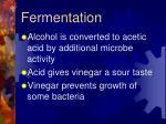 fermentation1