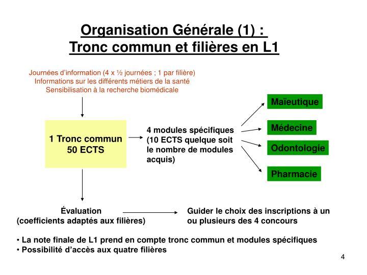 Organisation Générale (1) :
