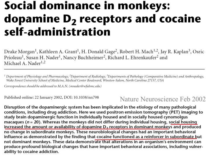 Nature Neuroscience Feb 2002