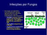 infec es por fungos