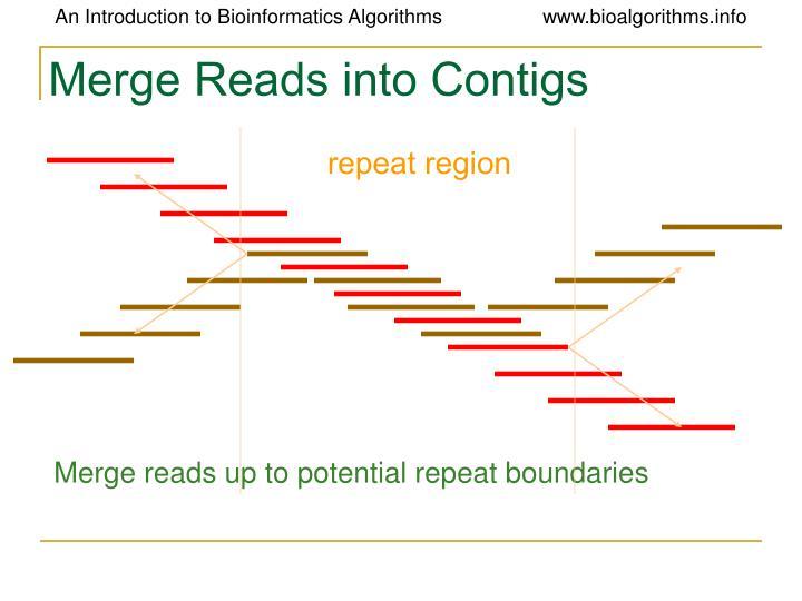 repeat region