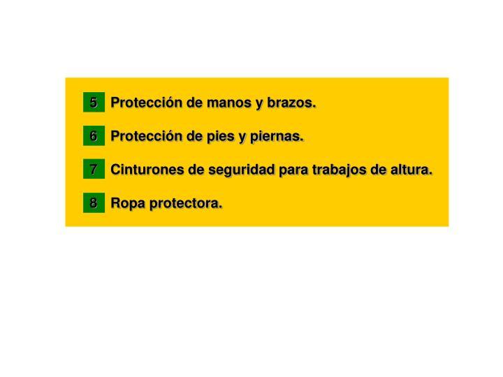 5 Protección de manos y brazos.
