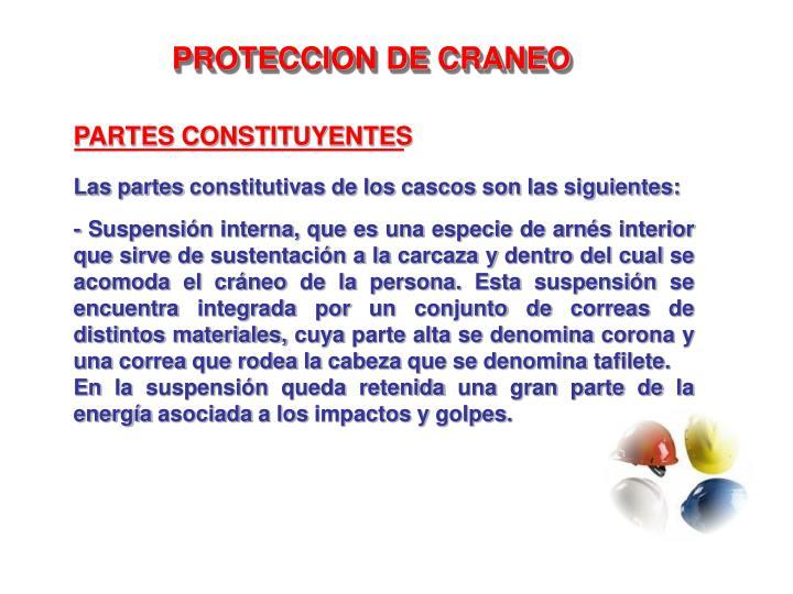 PARTES CONSTITUYENTES