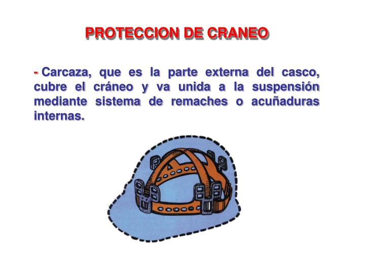 PROTECCION DE CRANEO