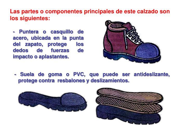 Las partes o componentes principales de este calzado son los siguientes: