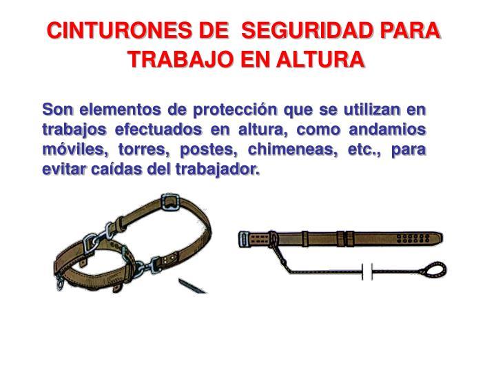 CINTURONES DE  SEGURIDAD PARA