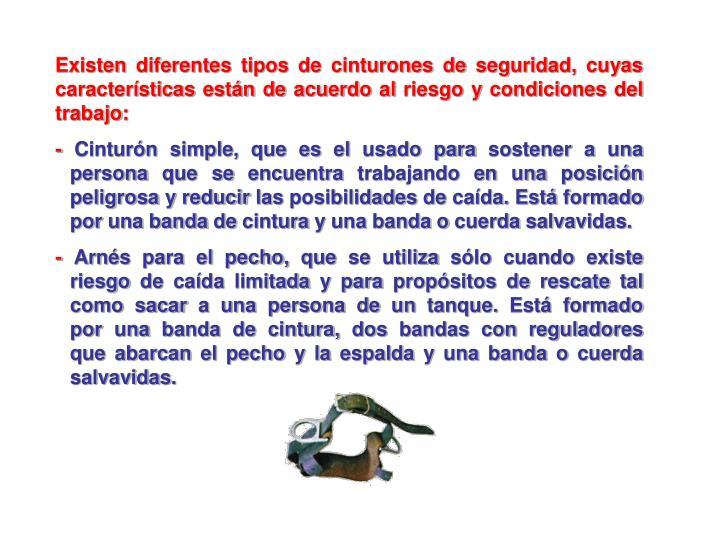Existen diferentes tipos de cinturones de seguridad, cuyas características están de acuerdo al riesgo y condiciones del trabajo: