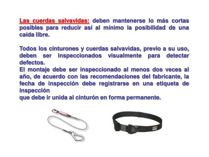 Las cuerdas salvavidas: