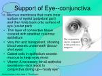 support of eye conjunctiva