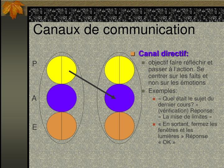 Canal directif: