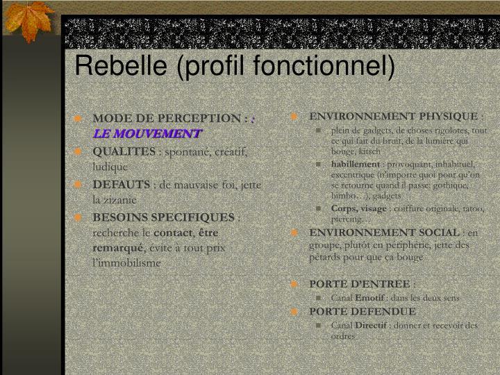 MODE DE PERCEPTION: