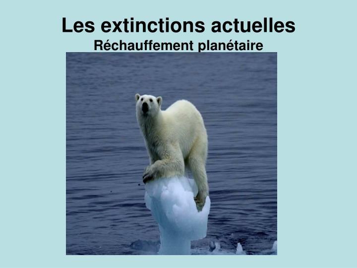 Les extinctions actuelles