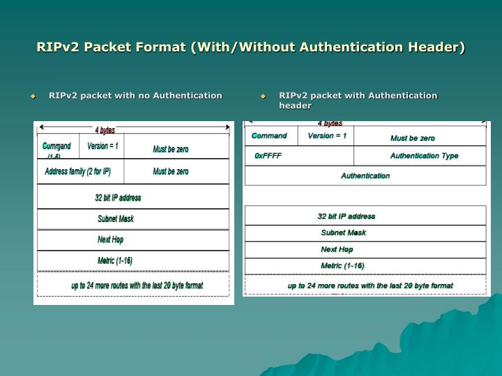 RIPv2 packet with no Authentication