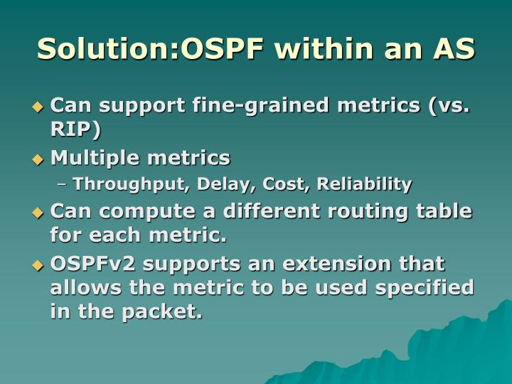 Solution:OSPF within an AS